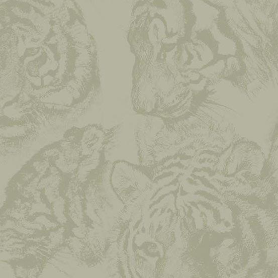 Tiger Kingdom Faces Shadow
