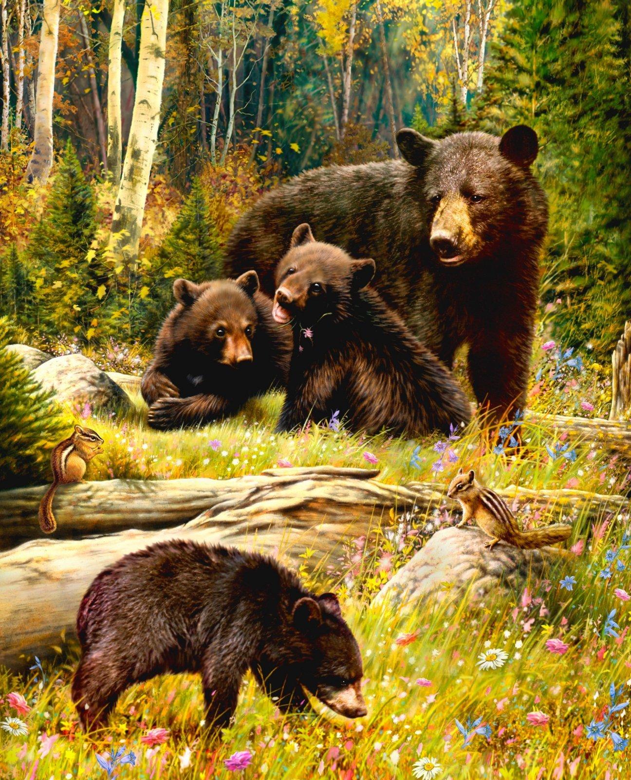 Black Bear Family 0025 Panel