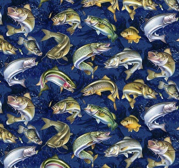 Fish Activity 0054 Navy