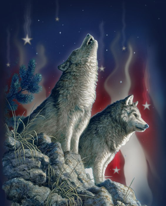 Howling Wolf Flag Sky 0070 Panel