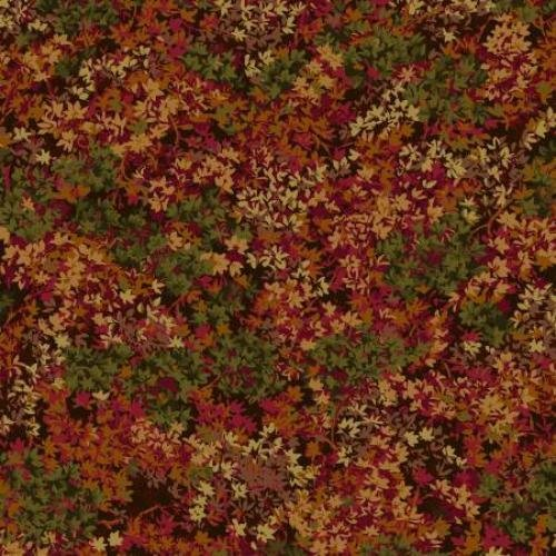 Colorful Autumn Leaves 16970