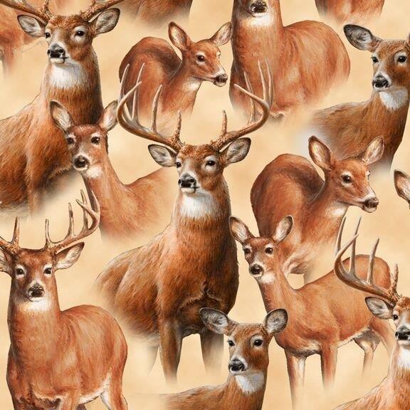 Deer Mountain Packed 24792 E Cream