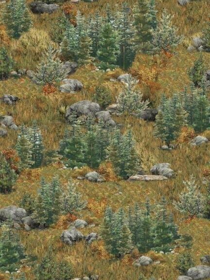 Deer Mountain Landscape 24793 G