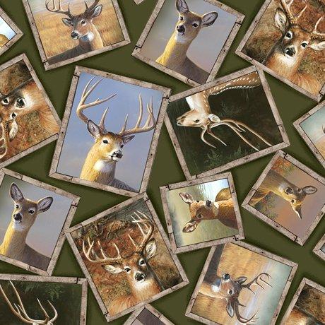 Deer Valley 26893-F Frames Green