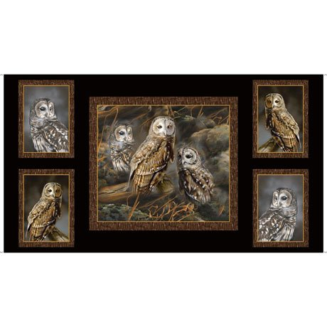 Nocturnal Wonders Owls 27063-J 5 Pic Panel