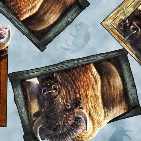 Roam Free 27941-Q Aqua Frames Buffalo