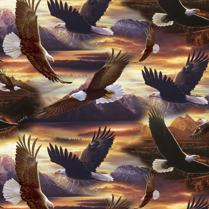 Eagles Soaring Over The Sunset 3757
