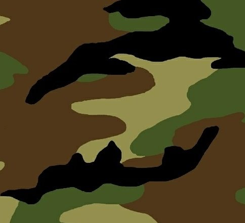 Camo Camouflage 51463-1 Wide 108 Backing