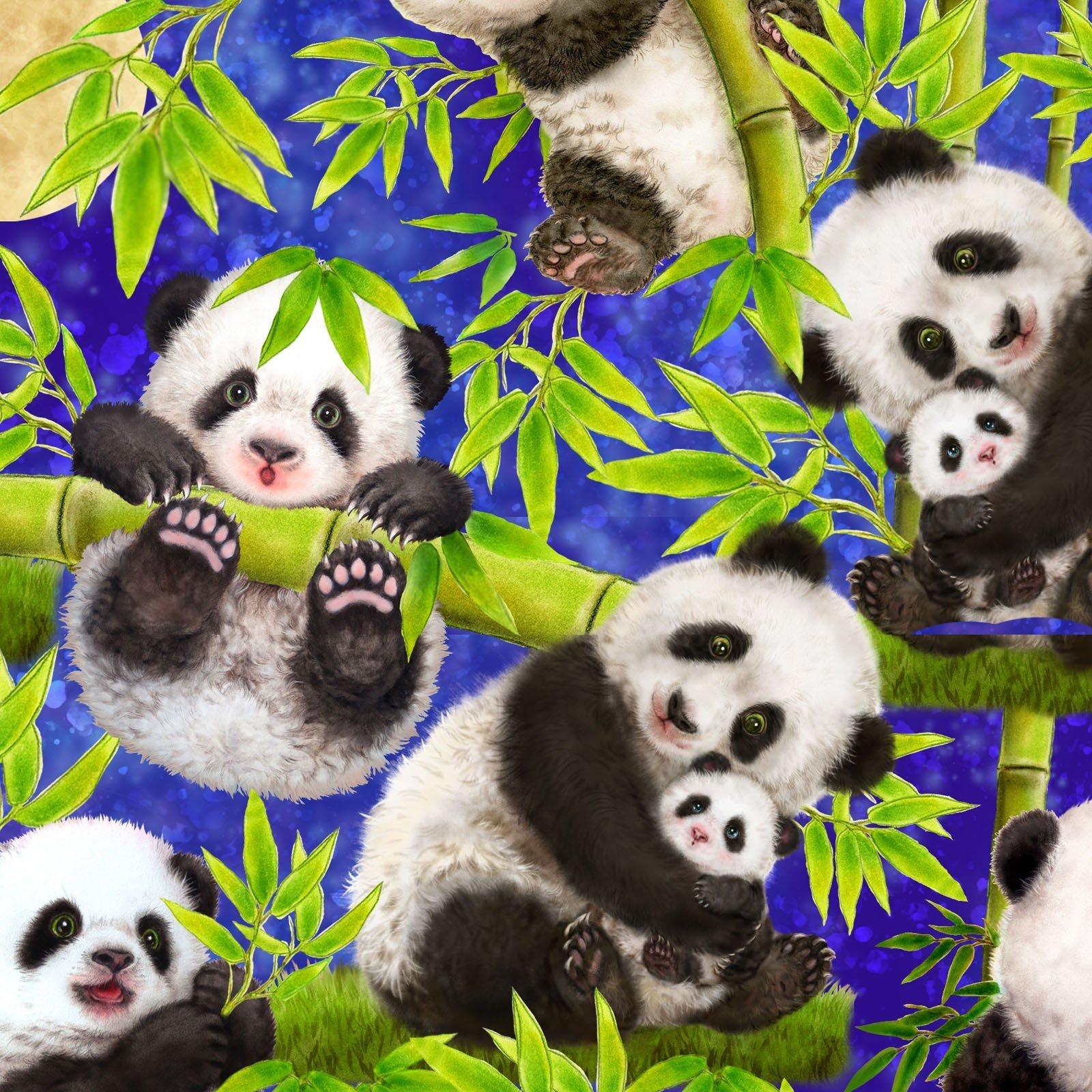 Panda Sanctuary 5266-77 Royal