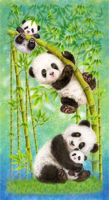 Panda Sanctuary 5276P-61 Panel