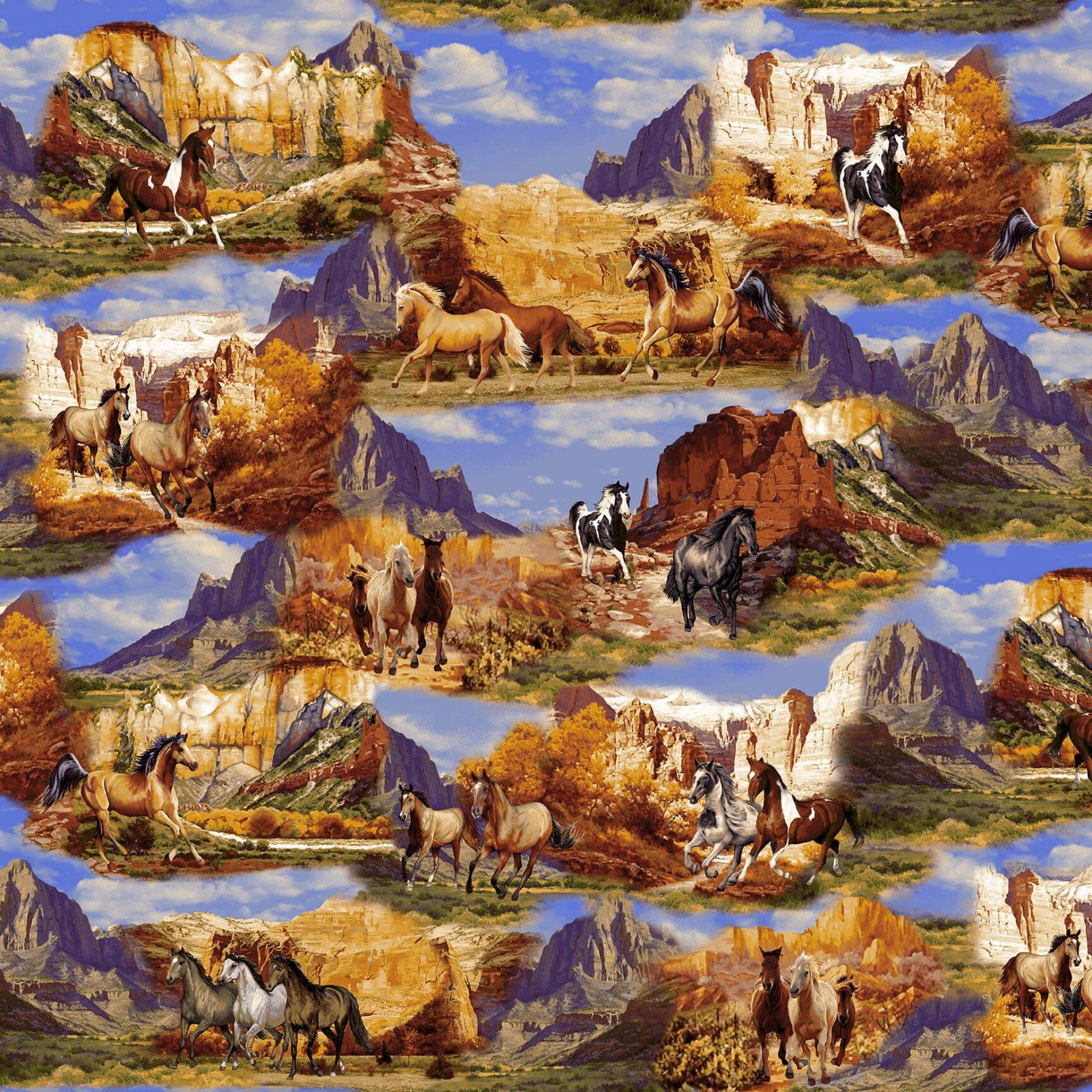Wild Wild West 5347-38 Horse Canyon Scenic