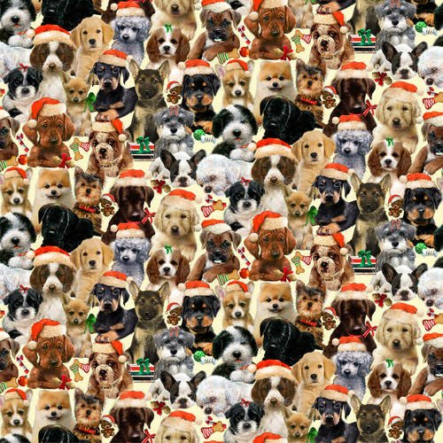 Fireside Pups 7194-44 Packed with Hats