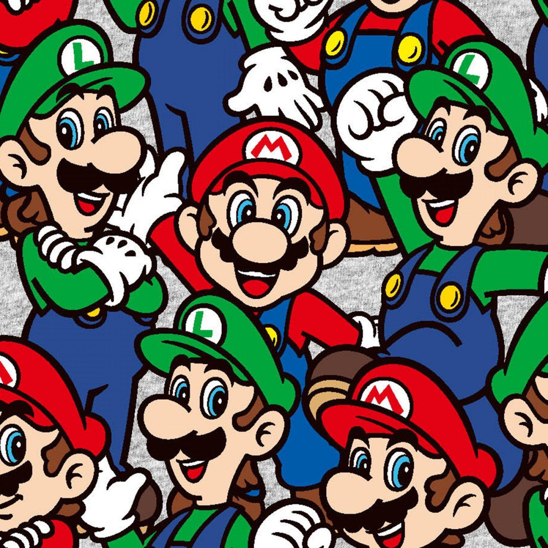 Nintendo 73545 Mario & Luigi Packed