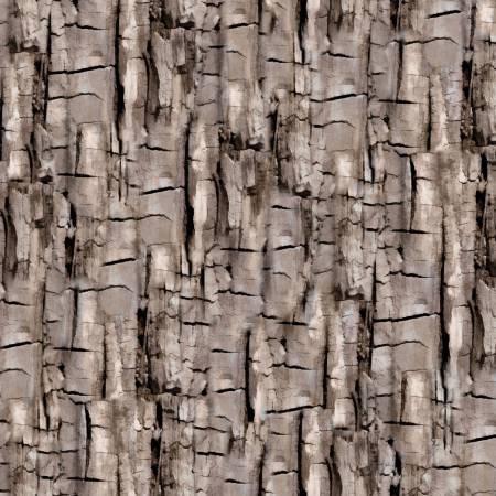 Tree Bark Texture 8488 07 Taupe