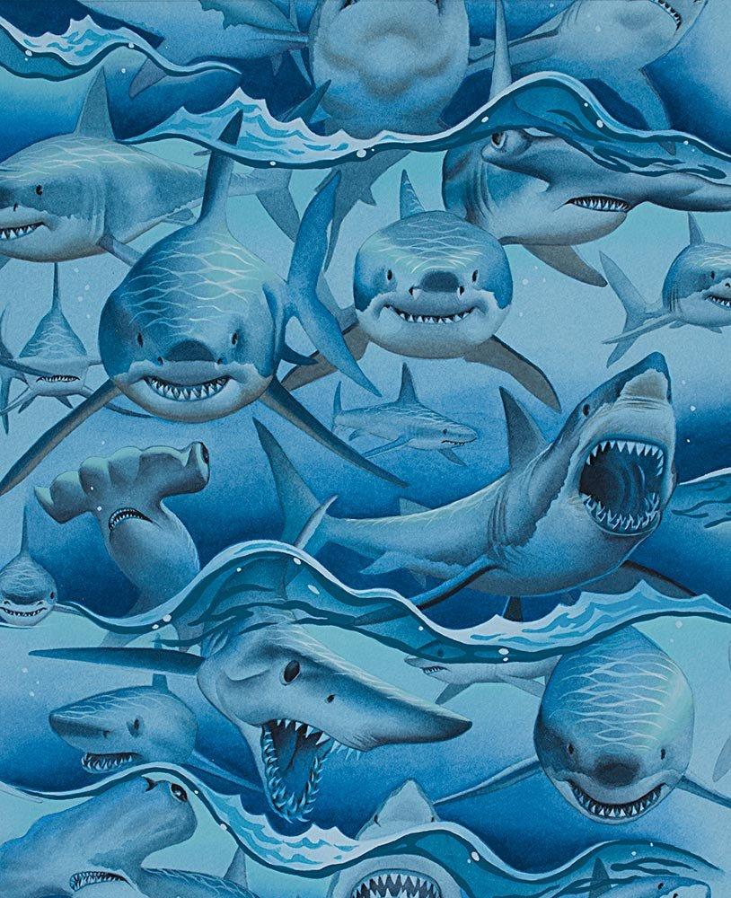 Dangerous Waters 8725 Sharks