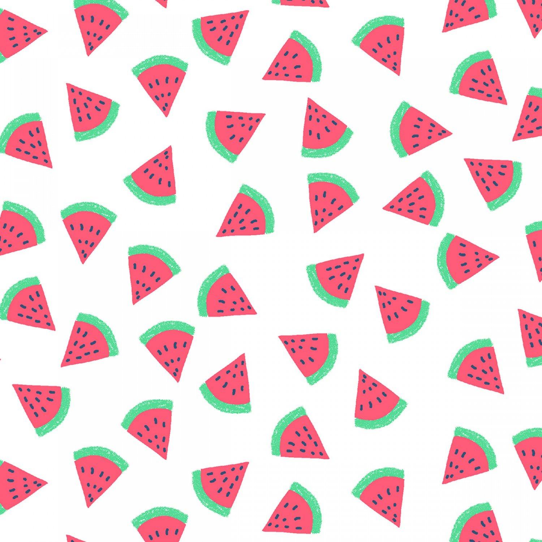 Fruit Watermelon 954 Toss on White
