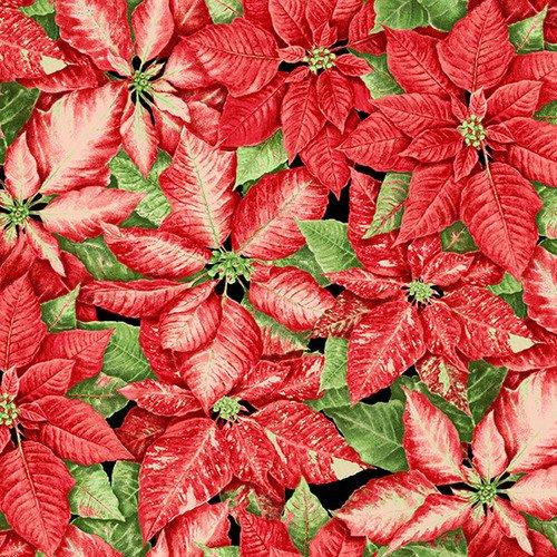 Holiday Botanical 9550-86 Packed Poinsettias