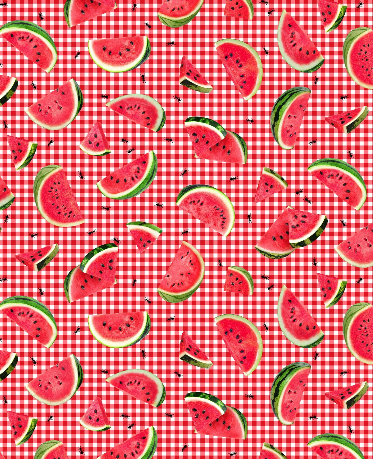 Ants & Watermelon Slices C7963