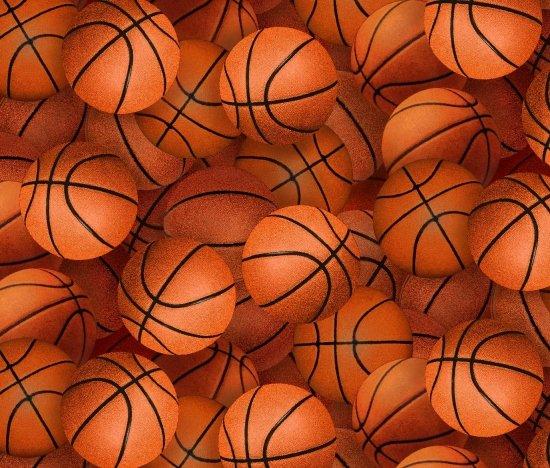 Basketballs 221 Orange