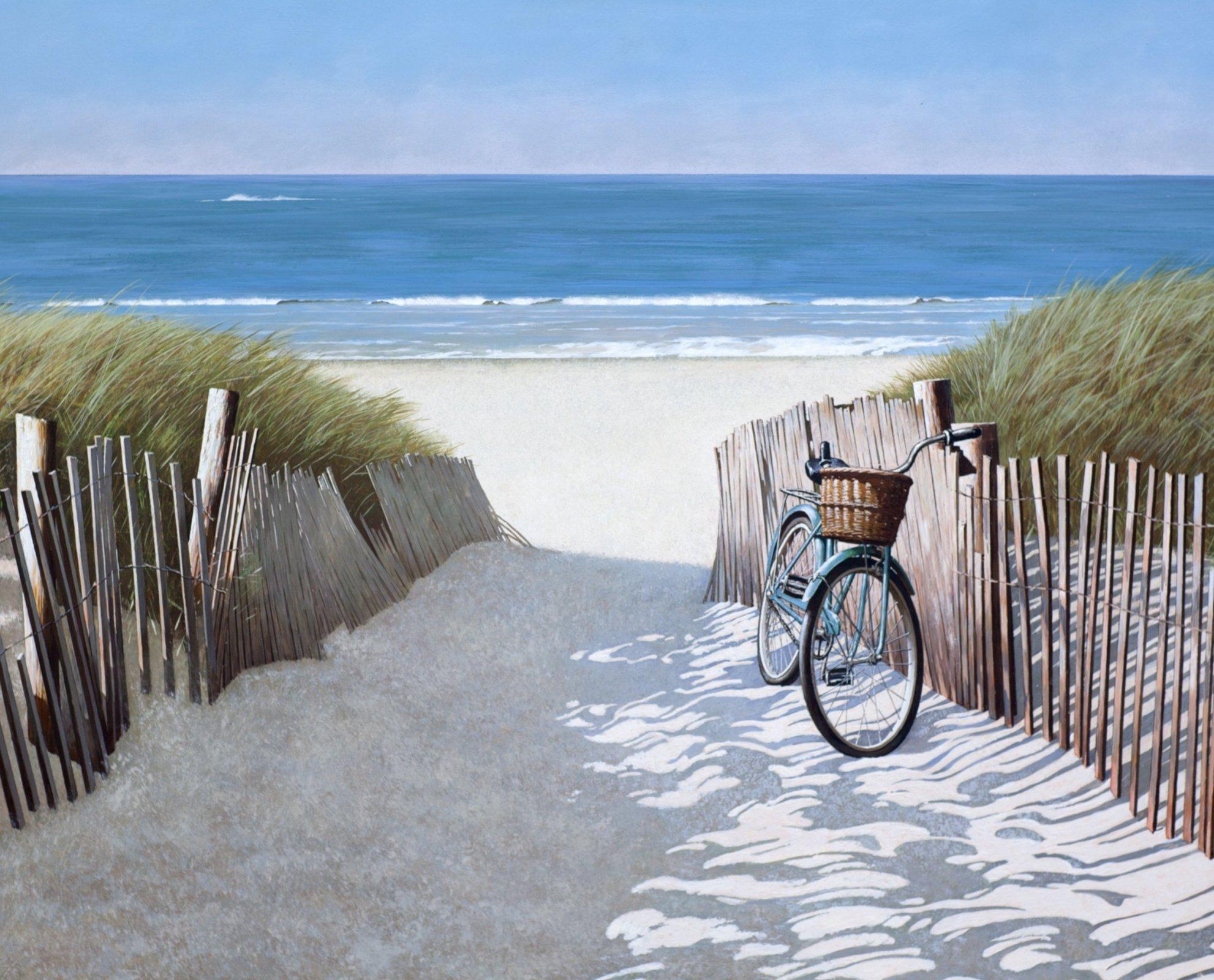 Beach Bike 3971 Panel