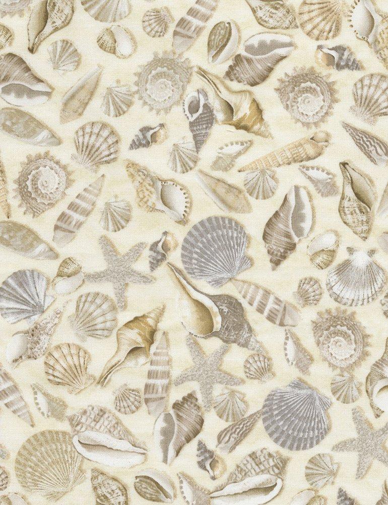 Beach Shells C5353 Cream