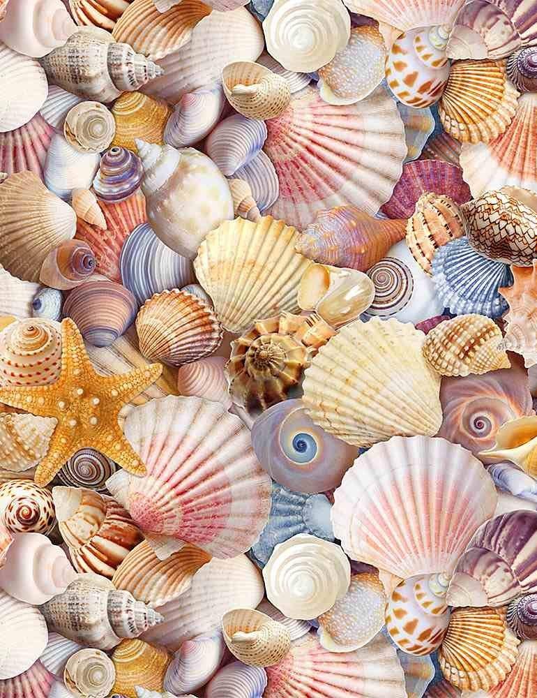 Beach Day C8460 Packed Seashells Multi