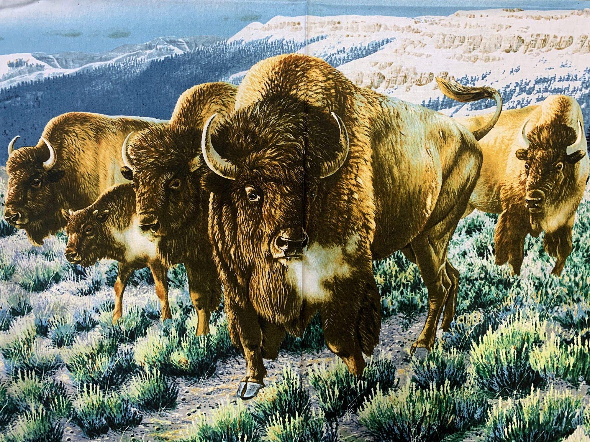Buffalo Bison Panel 24988X