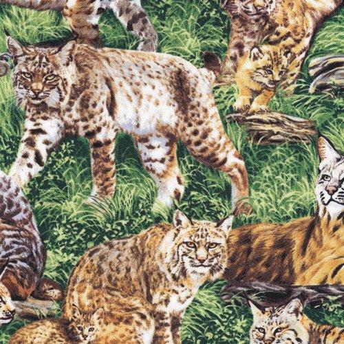 Bobcats 112-29521