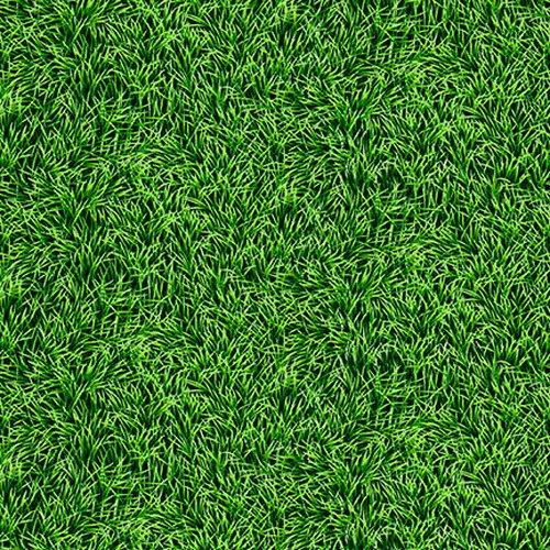 Born to Score 5283-66 Grass