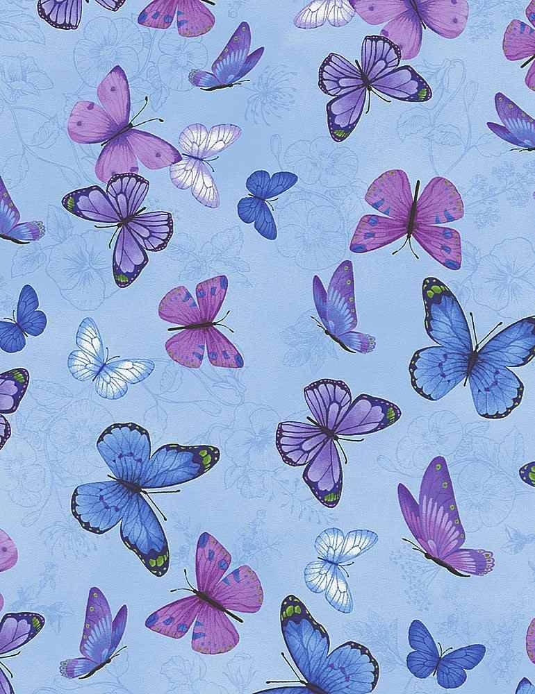 Butterflies on Pansies C7725 Blue