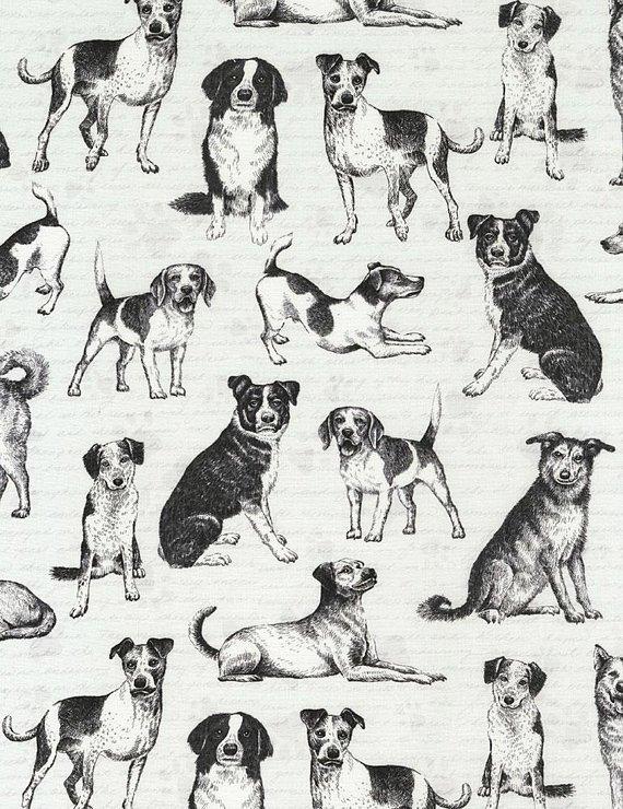 Dogs C6280 Black & White
