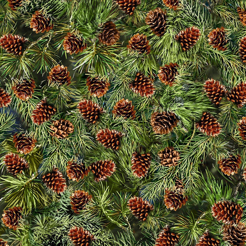 Nature C6736 Pine Cones