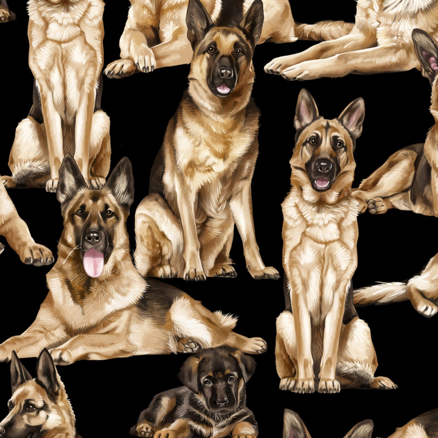 German Shepard Dogs C7364 Black