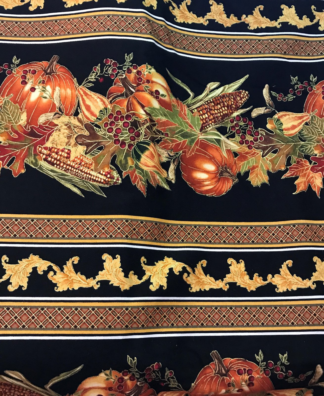 Fall Harvest Pumpkin Border Stripe CM2095