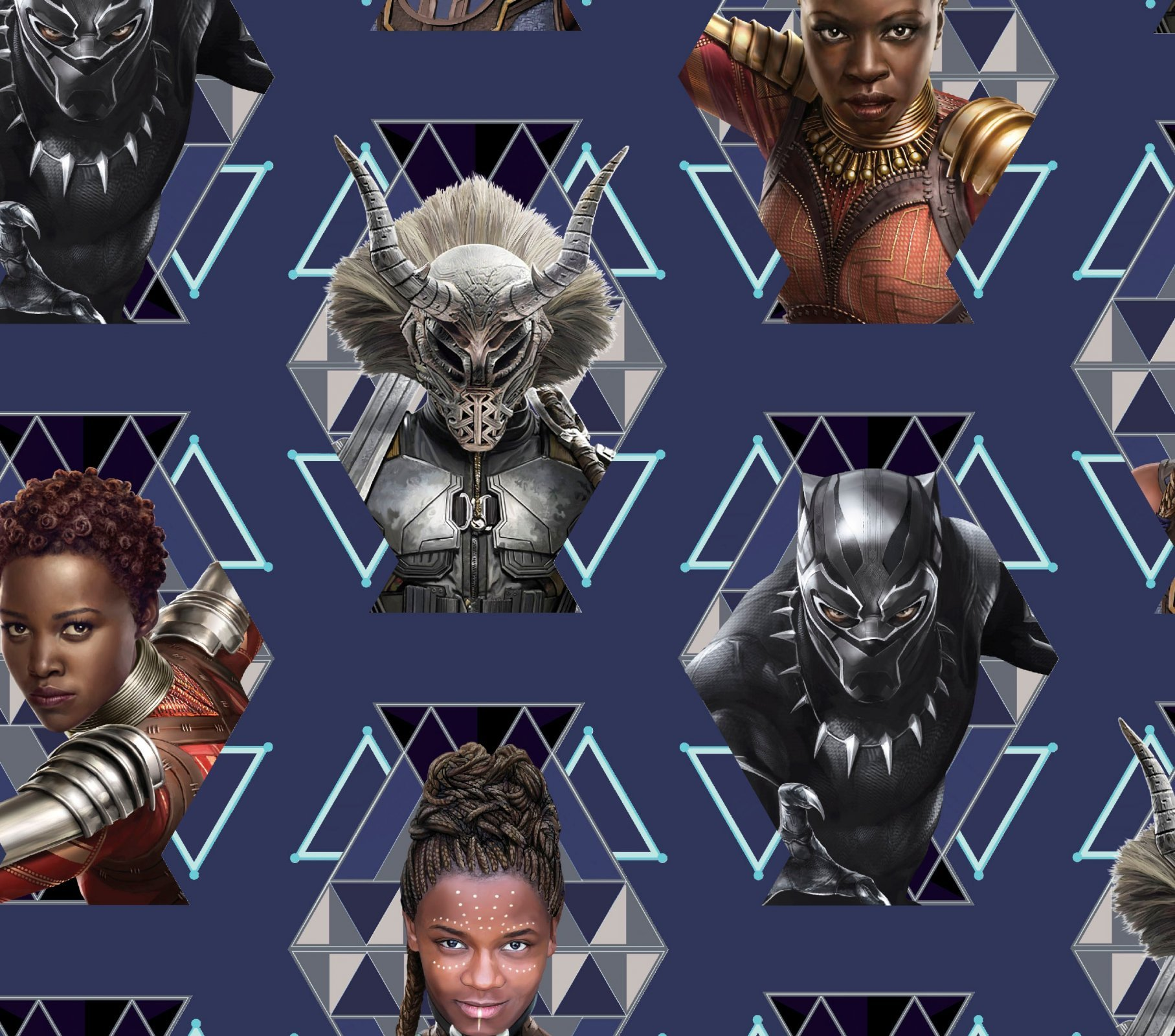 Black Panther 67592 Wakanda Warriors