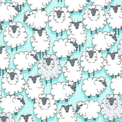 Sheepish CX7263 Aqua