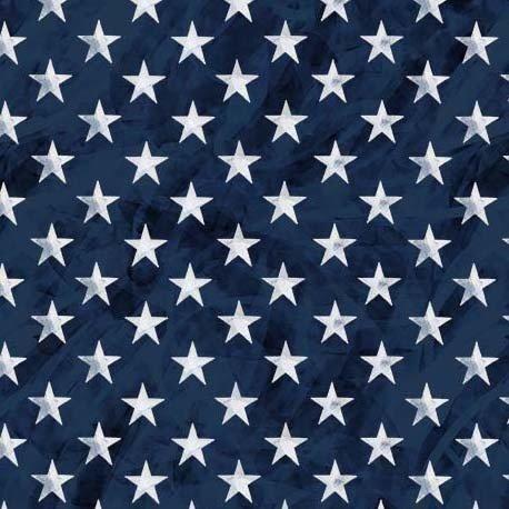 Land That I Love CX9704 Bright Stars Navy