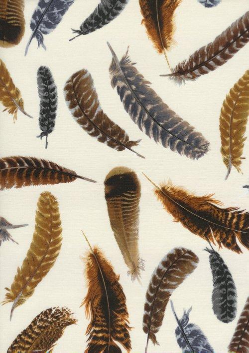 Brown Bird Feathers C8329