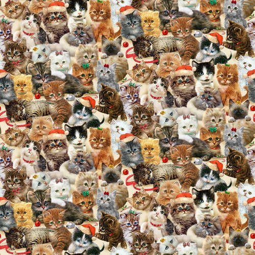Fireside Kittens 9063-44 Packed