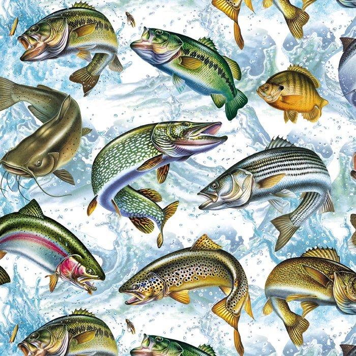 Fish Activity 0054-2 Aqua