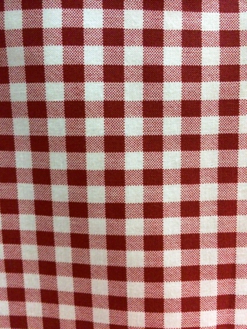 Gingham Check Red #2461