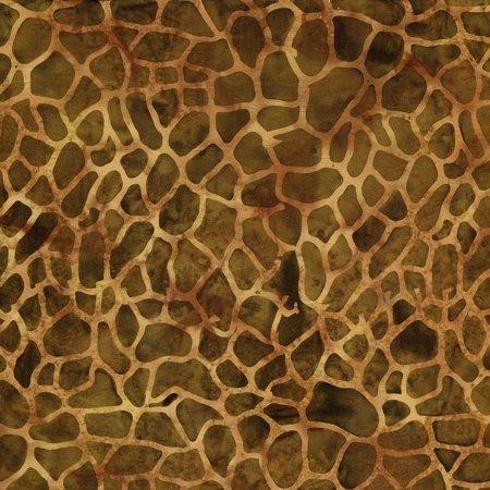 Giraffe 8675 Grasshopper