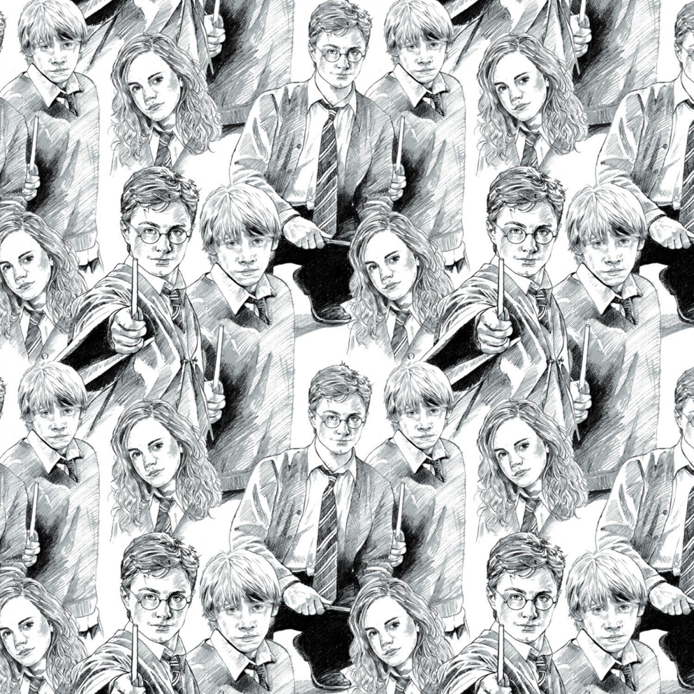 Harry Potter 2380015-1 Wizarding World Sketch