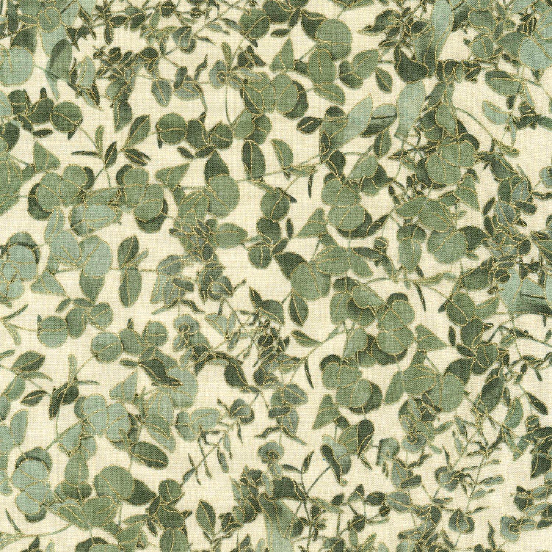 Harvest Eucalyptus Leaves CM7699