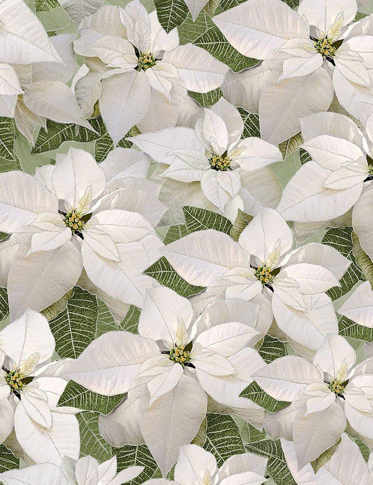Holiday CM6960 White Poinsettia