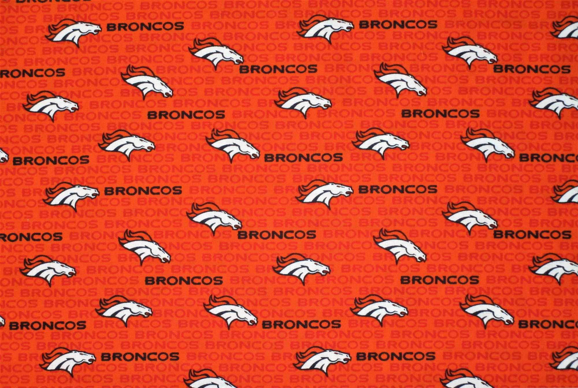 NFL Logo Denver Broncos 14501 Small