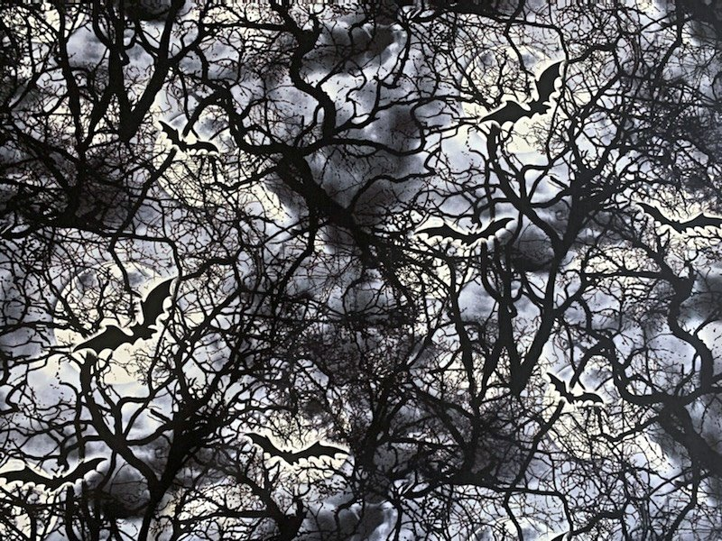 Wicked Haunted Trees C5984