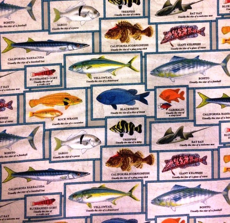 Catalina Island Fish Chart 8202 Cream