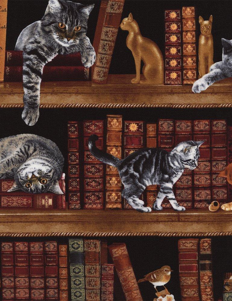 Cat Bookshelf C2863