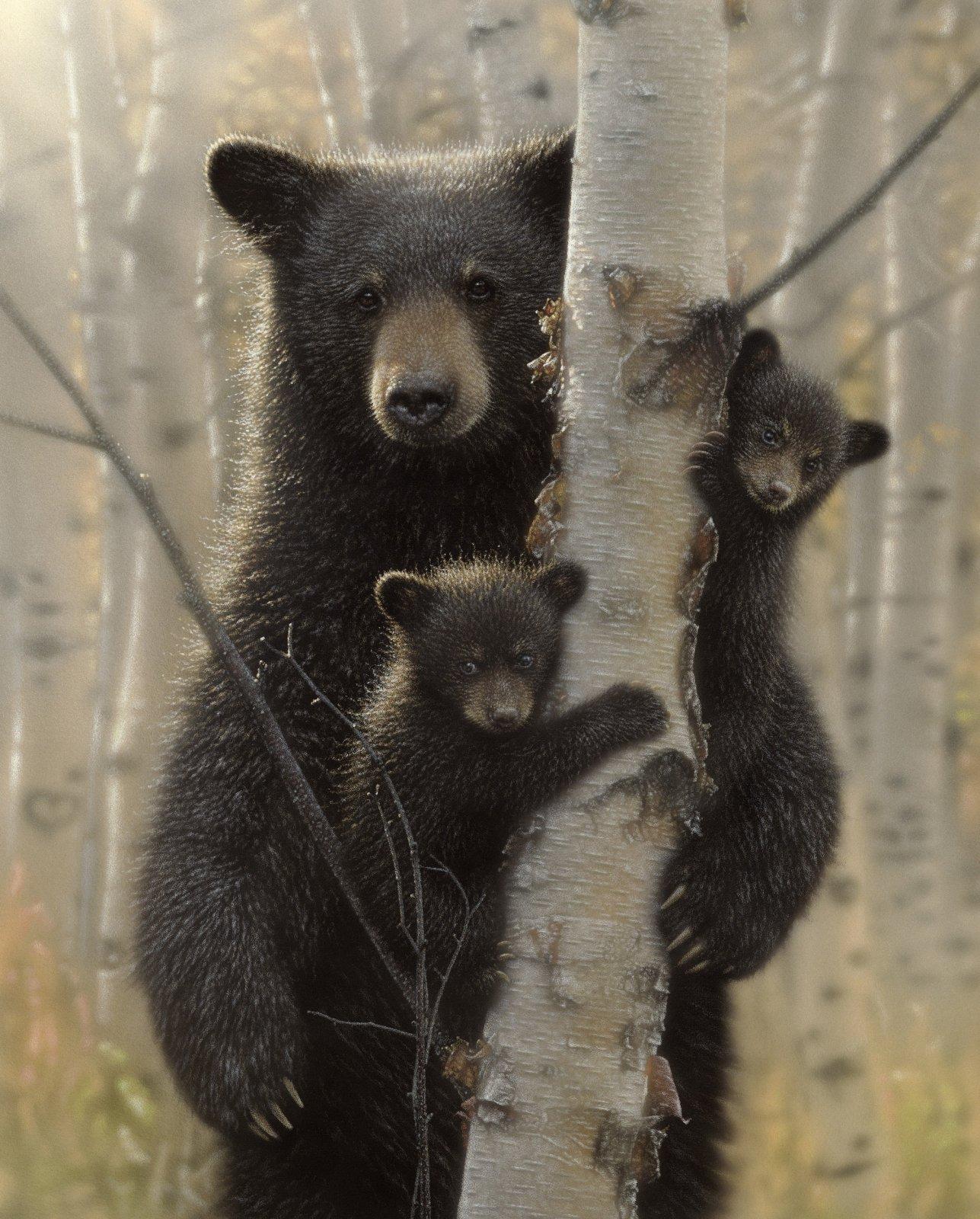 Mama Bear Climbing Tree 3075 Panel
